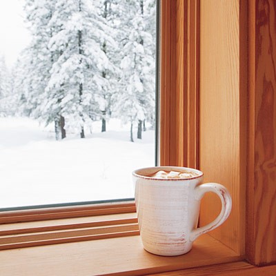 Golocalpdx 25 winter weather tips for Best windows for cold climates